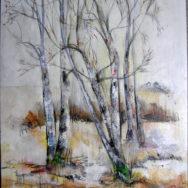 Birketræer i vinterdragt